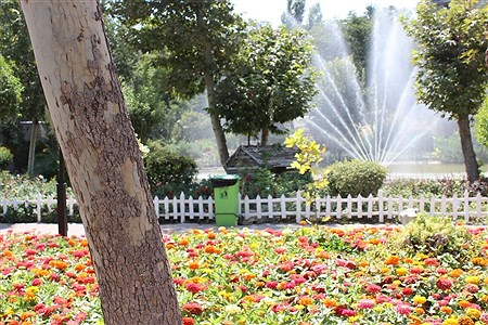 هفتمین نمایشگاه گل و گیاه کرج | Fatemeh Vazifeh