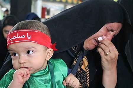 همایش شیرخوارگان حسینی مصادف با اولین جمعه ماه محرم در مصلی  شهر مود برگزار شد.   marziyeh shafiee tabar