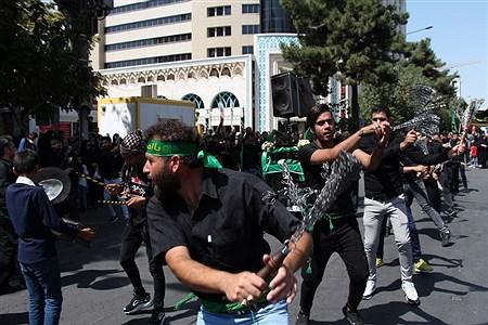 مراسم عزاداری روز تاسوعا در مشهد مقدس  | Moein Mohammadirokh
