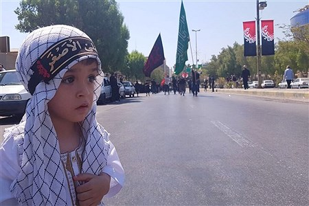 عزاداری روز تاسوعا در بوشهر | Abbas Heidari