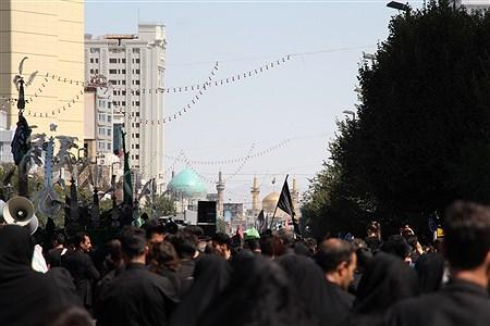 مراسم عزاداری روز عاشورا در مشهد  | Moein Mohammadirokh