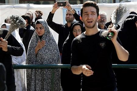 مراسم عزاداری و نماز ظهر عاشورا در حرم حضرت عبدالعظیم  | Bahman Sadeghi