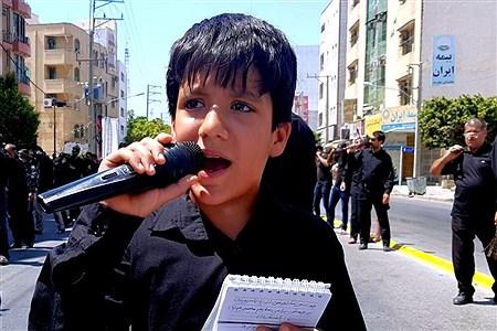 عزاداری روز عاشورا در بوشهر  | Abbas Heidari