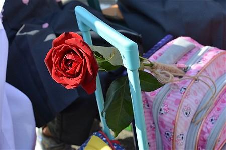 جشن شکوفه ها درمدارس شهریار | Sara Vesagh