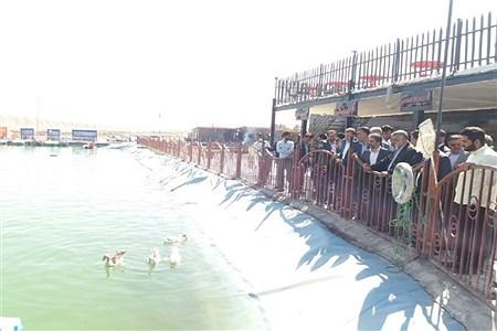 افتتاح پروژه تفریحی و آبزی پروری شوکت آباد | mohammadjavad ghassemi