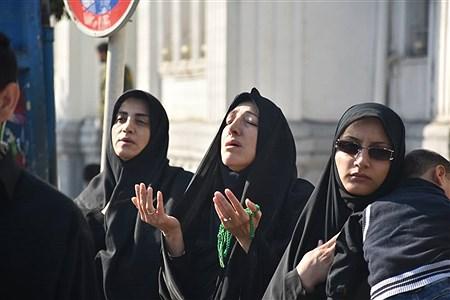 اربعین | Alireza Asgharzadeh