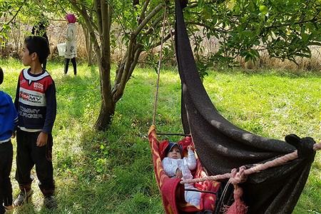 برداشت سیب درختی در شهر ونایی بروجرد | Neda Golchin