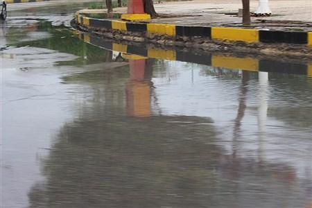 باران امروز در بوشهر   Meysam Mehrzadeh