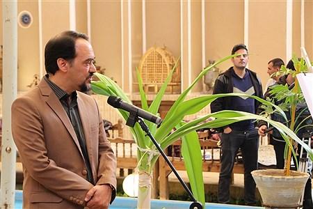 | Amir Hossein Amiri Nezhad
