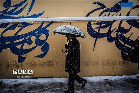 بارش برف پاییزی در تهران |