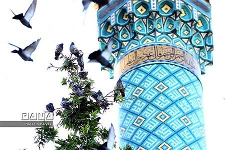 نماز عید فطر در امام زاده صالح(ع) |