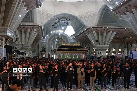 برگزاری مراسم احلی من العسل در شهر تهران |
