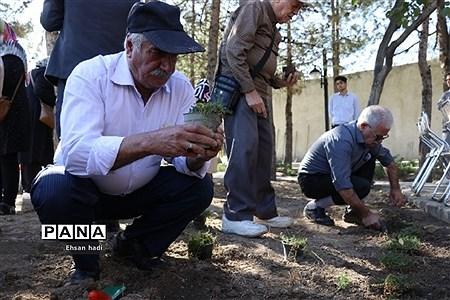 کاشت جمعی گل و گیاه در فضای سبز محلات توسط اعضای باشگاه سالمندان گنجینگان |
