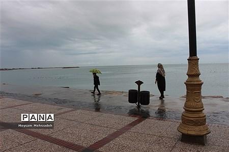 بارندگی در بوشهر |