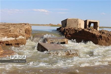 به یمن بارشهای اخیر تالاب صالحیه نظر آباد جانی دوباره گرفت |