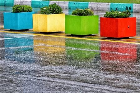 طراوت بهاری باران در روزهای کرونایی کیش | Amir Hossein Yeganeh