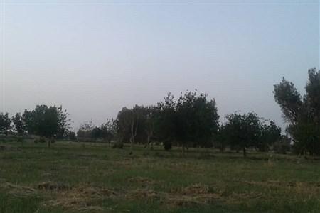 طبیعت زیبا و بکر سیستان پس از دو دهه خشکسالی | sheiva baikee