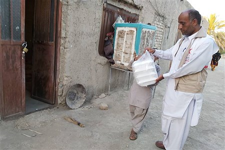 طبخ و توزیع یک هزار پرس غذای گرم میان نیازمندان جنوب سیستان و بلوچستان با مشارکت کمیته امداد خمینی(ره)، هلال احمر و خیرین | zahra soltanabade