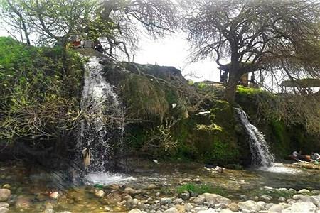 فراخوان عکاسی مردم و محیط زیست به مناسبت هفته گرامیداشت محیط زیست | Ali hamid
