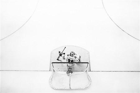 مسابقات هاکی روی یخ  | Ali Sharifzade