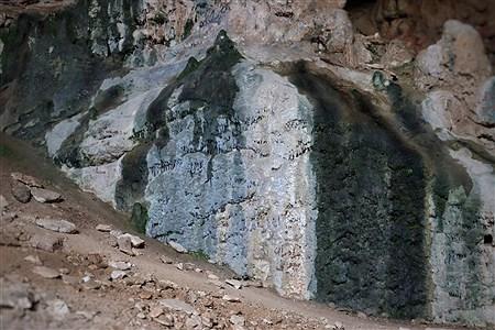   Ahmadreza Karimiyan