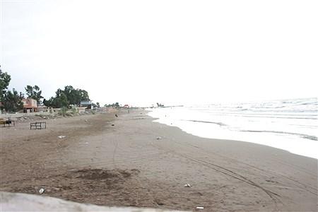 ساحل دریای ساری   Abolfazl Akbari