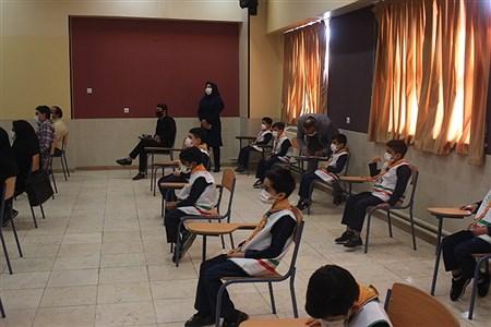 | Hassan taghiyan