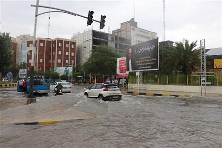 بارش باران | Mobin hassani tavabe