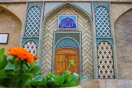جولان کرونا در شیراز و تعطیلی شهر | Mahsa Abdi