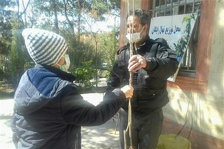 اهدای  رایگان نهال و غرس در بوستانهای خاورشهر به مناسبت جشن تولد زمین | Zahra jiriyaei sharahi