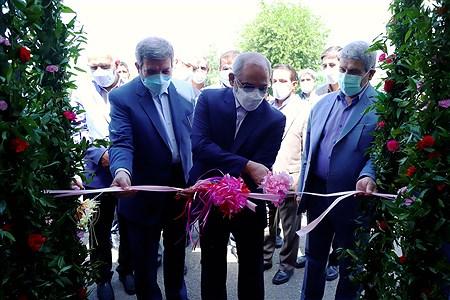 افتتاحیه طرح سنجش سلامت جسمانی و آمادگی تحصیلی نوآموزان    Zahra Alihashemi