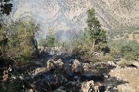 آتش سوزی درختان و مراتع منطقه شبلیز دنا   Mahmad sadgh berami