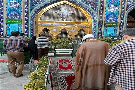 حال و هوای حرم مطهر رضوی  در دهه ولایت | Amirali Moghadam