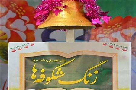 جشن شکوفه ها | Fatemeh tajamiri